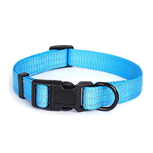 Mile High Life Dog Collar | Nylon with Reflective Three 3M Straps | Hot Blue, Small Neck 11
