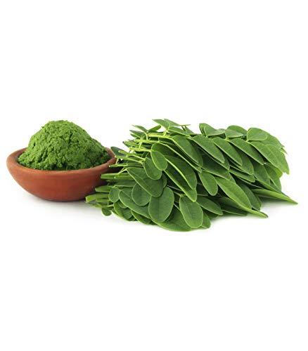 Organic Moringa Oleifera Leaf Powder - 5 lb - 100% Pure, Raw, Non GMO, Vegan & Kosher - Amazing in Smoothies, Drinks, Tea, Juice & Recipes - Energizing Green Superfood Packed with Vitamins & Minerals