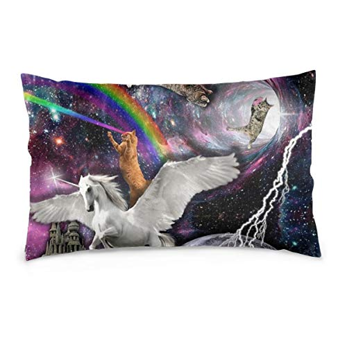 Private Bath Customiz Rainbow Lazer Cat Horse Space Glaxy Pillowcase Zippered Pillow Case Pillow Protector Best Pillow Cover Two Sided Print 20 x 30 inch