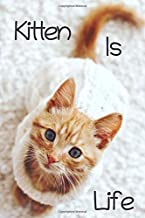 Kitten Is Life Note Book: For Cats Lovers and Owners Note Book, Girls Love Cats and Kitten, Cute Little Cats, Kitten Cats 120 Perineum Quality Pages (Do You Love Cats Like Me?)