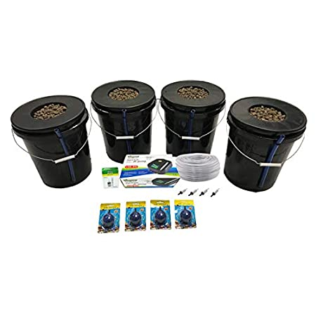 Best Indoor Hydroponic growing Systems