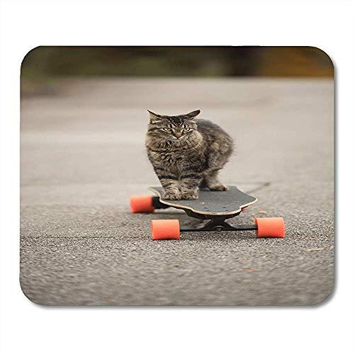Mauspad Coon Graue Dumme Katze Auf Elektrischem Skateboard-Brett Maine-Notizbücher Tischrechner-Matten Bürozubehöre 25X30Cm Mausunterlagen