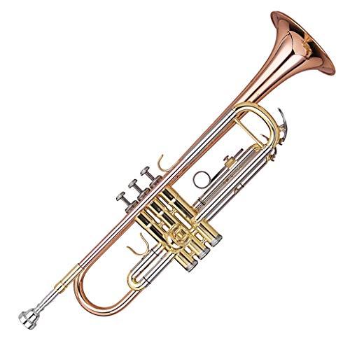 powerful Kaizer C-Series (4000) Intermediate Trumpet B Flat Bb New Model 2019