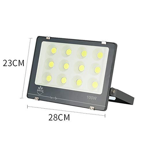 Projecteur LED,Extérieure D'éclairage Anti-déflagrante De Chantier De Construction De Stade De Projecteur Mené Imperméable Mené Superbe Extérieure (taille : 100W)