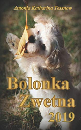 Bolonka Zwetna Terminplaner 2019: Kalender mit Feiertagen und Mondstand (Bolonka Zwetna Kalender,...