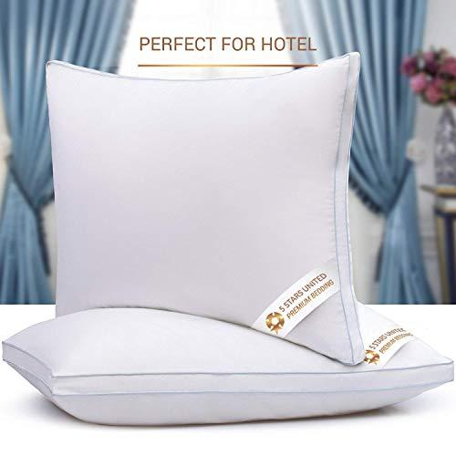 Soft Fiber Fill 20x30 2-Pack Queen Size Bed Pillows for Sleeping Mid Loft