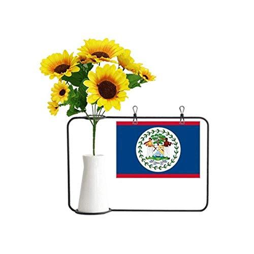 Beauty Gift Belize-Flagge Nordamerika, künstliche Sonnenblumen-Vasen, Flasche Segenskarte
