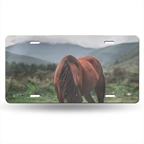 Doinh Paard Op De Prairie License Plate Gepersonaliseerde Eenzijdige Afdrukken Retro Licentie PlateAluminum Novelty License Plates12x6inch