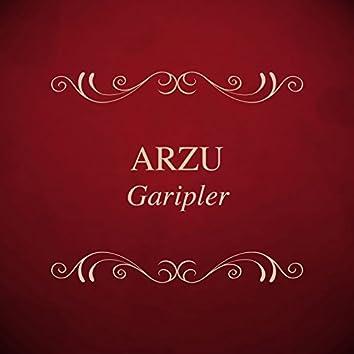 Garipler