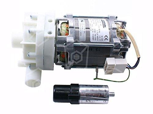 HANNING UP60-442 Pumpe für Spülmaschine Winterhalter GS302, GS315, GS215, GS402, GS202, GS310 ersetzt UP30-355 1 -phasig 5 µF 12mm