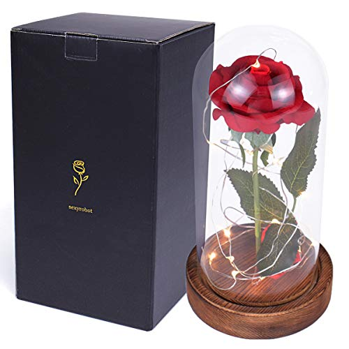 sexyrobot Beauty and The Beast Rose, Enchanted Red Silk Flower with LED Glass Dome for Valentine's Day Mother's Day Christmas Anniversary Birthday Thanksgiving Decoration Gift