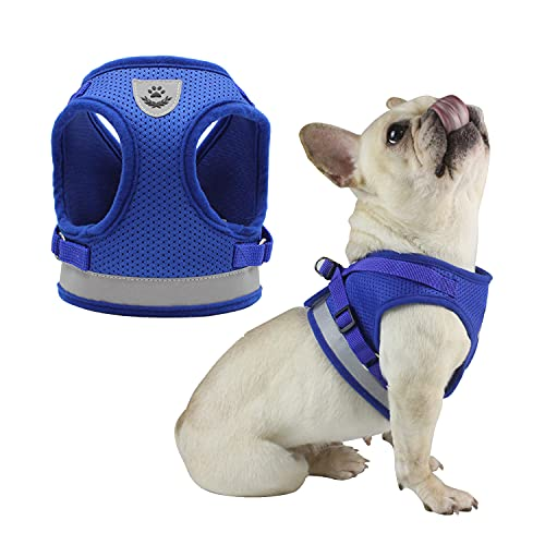 JKFOI Dog Harness and Leash Set Pet Harness Adjustable Reflective No Pull Soft Breathable Mesh Puppy Vest Harness for Small Dogs Cats (Blue,S)