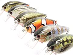 wLure - We Make Every Lure Special! Best Fishing Gift for Him or Her! Length: 3 1/4 inch, Body Length: 2 1/2 inch, Weight: 1/2 oz, 6 Lures with Free Tackle Box Impressive Lifelike Patterns/Colors Powered by wLure RealSkin Technology, Colors may vary ...