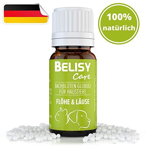 BELISY >Läuse & Flöhe< Bachblüten Globuli für Hunde & Katzen - Laus- & Flohschutz - Spezial Bachblütenmischung - alkoholfrei - 10 g
