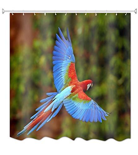 A.Monamour Bunte Papageien Vögel Fliegen Über Wald Fotografie Bild Drucken Wasserdicht Mehltau Resistent Stoff Polyester Duschvorhang Für Bad 165X180 cm / 65