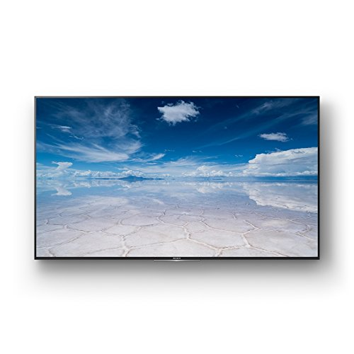 Sony 75 Inch 4k/uhd Pro Bravia Display