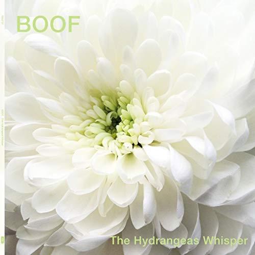 The Hydrangeas Whisper (2lp) [Vinyl LP]