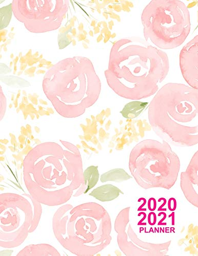 2020 2021 Planner: Cute Two Year - Monthly Calendar Planner | 24 Months Jan 2020 to Dec 2021 For Academic Agenda Schedule Organizer Logbook and Daily Journal | Cover Design Code DT 00102996