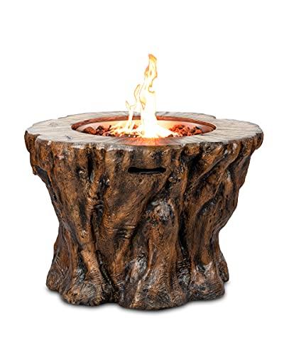 Clifton Gaskamin Wood Trunk Gartenkamin...