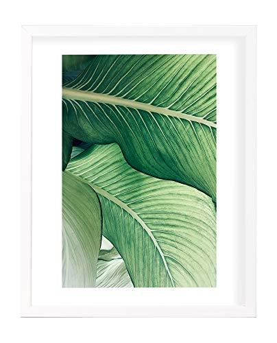 Postergaleria Bilderrahmen | 30x40 | Weiß | Holz | Plexiglas | 8 Farben | 10 Größen | Posterrahmen | Fotorahmen