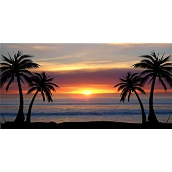 Rogue River Tactical Ocean Beach Shoreline License Plate Novelty Auto Car Tag Vanity Gift Waves Coastal Sunset KDWVMA1859