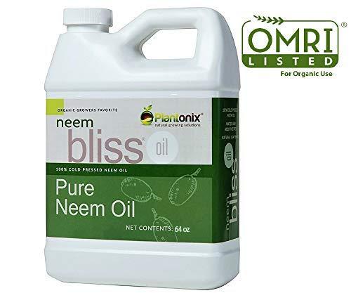 Best Pure Neem Oils
