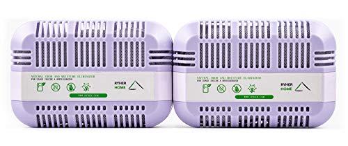 Ryher Absorbe y Elimina olores del frigorífico – Ambientador y purificador de Aire de carbón Activo de bambú 100% Natural - Quita olores del frigo (XXL - 2 Unidades, Morado)