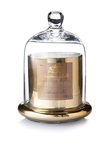 Zodax Apothecary Guild Candle Jar with Glass Dome, Gold, Small, Siberian Fir