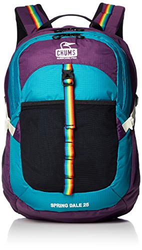 [チャムス] リュック Spring Dale 25 II Teal/Purple
