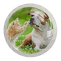 引き出しノブプルハンドル4個 クリスタルガラスのキャビネットの引き出しは食器棚のノブを引っ張る,小さな子猫と遊ぶテリア犬