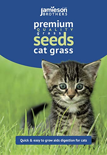 Jamieson Brothers Cat Grass Seeds