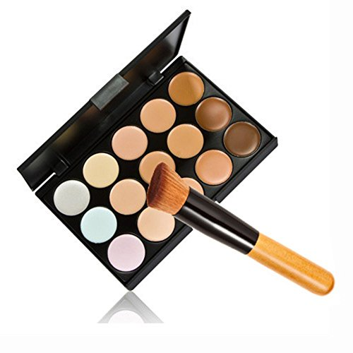 Multifunktions Puderpinsel Schminkpinsel Make Up Set 15 Farben Concealer Palette Abdeckcreme...