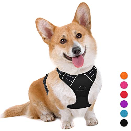 BARKBAY No Pull Dog Harness Large Step in...