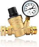 RVGUARD RV Water Pressure Regulator Valve, Brass Lead-Free Adjustable Water Pressure Reducer with Gauge and Inlet Screen Filter for RV Camper Travel Trailer