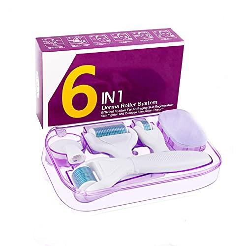 Dermaroller, Winpok 6 in 1 Mikronadel Derma Roller, 0.25/0.5/1mm Dermaroller Set für Körper und Gesichtspflege, für Anti-Falten, Schwangerschaftsstreifen, Akne (blau)