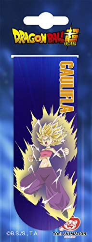 Clairefontaine Dragon Ball Magnetic Bookmarks - Assorted Designs, Pack of 18