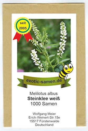Weißer Steinklee - Melilotus albus - Gewürz- und Arzneipflanze - Bienenweide - 1000 Samen