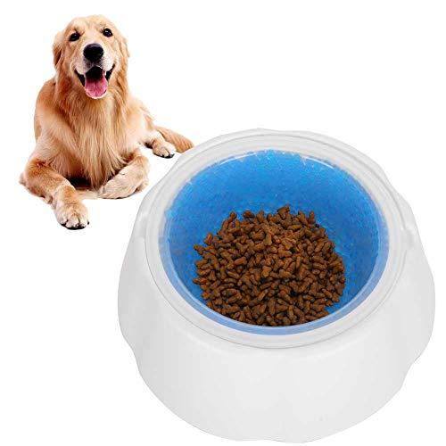 Salaty Ciotola refrigerante per Cani, Ciotola per Animali Domestici Non tossica Durevole, Rimovibile Blu per Cani con Supporto adattivo per Animali Domestici