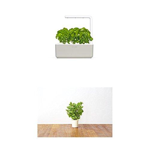 Click & Grow Smart Garden 3 jardinière d'intérieur 30 x 10 x 28 cm Beige (contient 3 capsules de basilic) + 2 recharges menthe (x3)