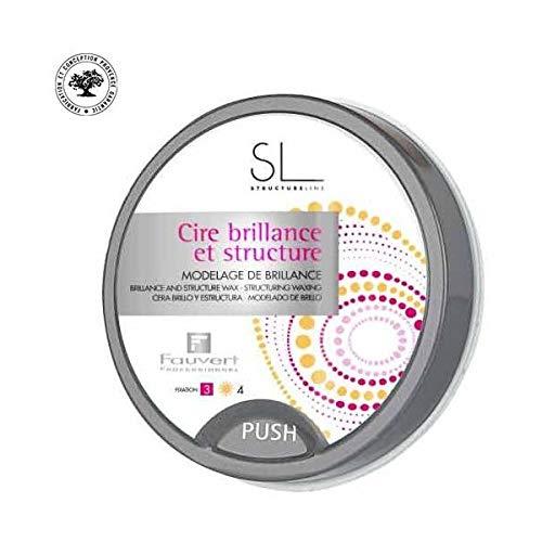 Fauvert Professionnel - Sl Cire Brillance & Structure - Produit Coiffant - 40 Ml