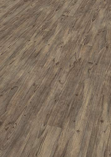EGGER EHD026 Designboden GreenTec braun grau-Carpio Pinie dunkel (7,5mm kompakt 1,99 m²) Design-extrem robust, strapazierfähig, pflegeleicht, wasserfest und PVC frei