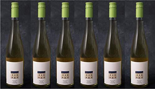 BIO Traubensaft Weiß - 6er Vorteils-Pack - Die Weinstadt