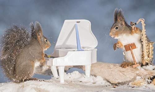 LIZELUO Puzzle 1000 Teile DIY Holz Puzzle Eichhörnchen Spielt Klavier Freizeit Creative Kreuzworträtsel Spiel Kind Puzzle Spielzeug Geburtstag Festival Einzigartiges Geschenk