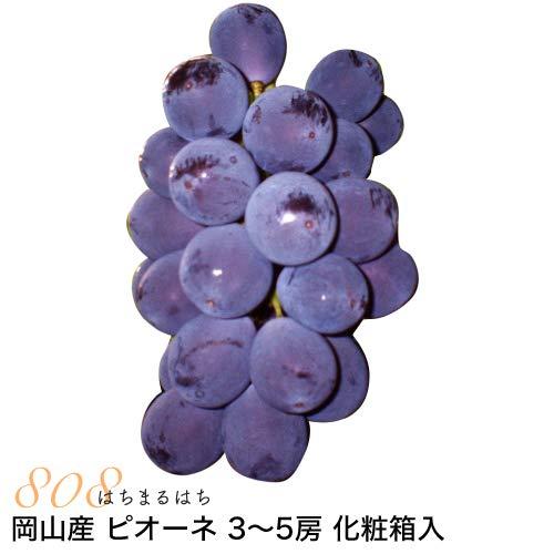 岡山産 ぶどう ピオーネ 1.8kg 3〜5房 化粧箱入 ブドウ 葡萄 産地直送