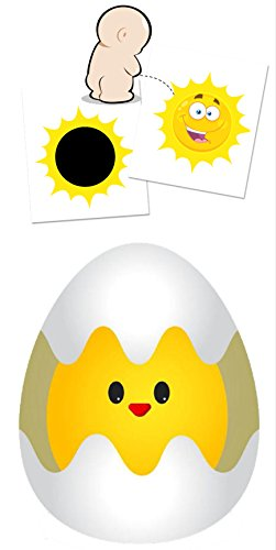 Potty Trainer Sun + Egg for Boys / Aim and Hit the Toilet / Sticker for Toilet