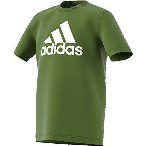 adidas Kinder MH BOS T-Shirt, Tecoli/White, 128