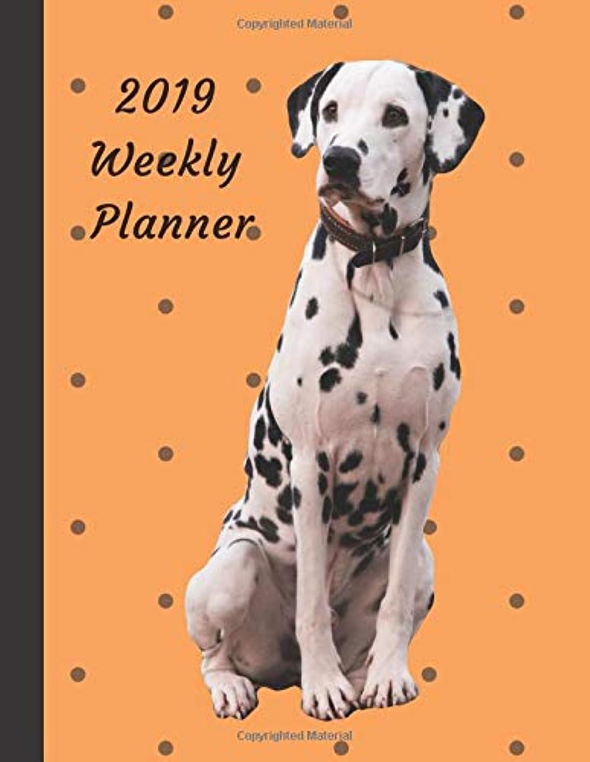 面白い商品忘れっぽいDotty Dalmatian Dogs Planner: 2019 Large Weekly Organizer Diary with Goal Setting & Gratitude Sections, Dog (Positive Life Planner)