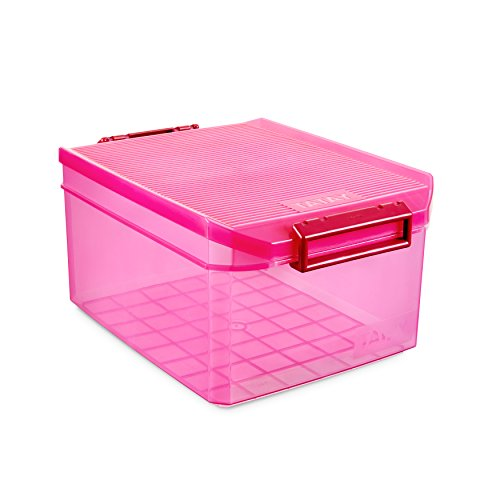 TATAY 1150112 - Caja de Almacenamiento Multiusos con Tapa, 14 l de Capacidad, Plástico Polipropileno Libre de BPA, Rosa Fucsia Translúcido, 27 x 39 x 19 cm