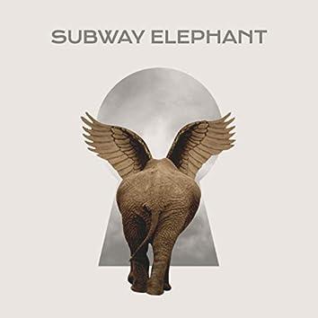 Subway Elephant