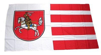 Fahne Stockflagge Dithmarschen NEU 30 x 45 cm Flagge